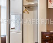 Здесь изображено Шкаф-купе Венеция 1 (шампань)